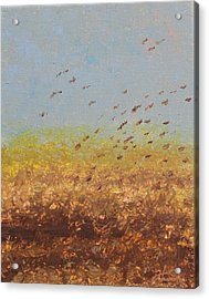 Fly Away Home Acrylic Print