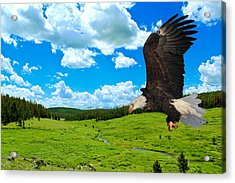 Acrylic Print featuring the photograph Fly By by Shane Bechler
