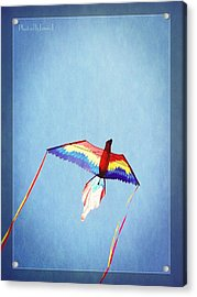 Fly Free Acrylic Print by Jamie Johnson