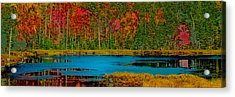 Fly Pond Abstract Acrylic Print by David Patterson