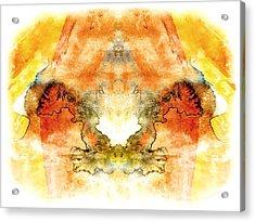Fly To The Sun Acrylic Print