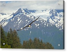 Flying Amongst The Mountains Acrylic Print by Tim Grams