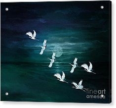 Flying By The Moon Bay Acrylic Print by Bedros Awak
