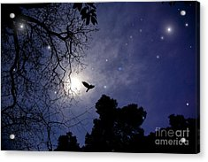 Flying By The Moon Acrylic Print