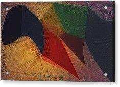 Flying Carpet? Acrylic Print