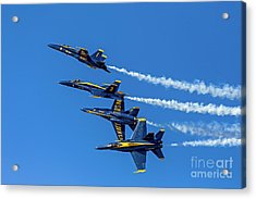 Flying Formation Acrylic Print