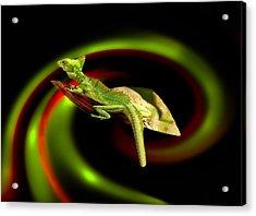 Flying Gekko Acrylic Print by Christine Sponchia