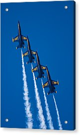 Flying High Acrylic Print by Adam Romanowicz