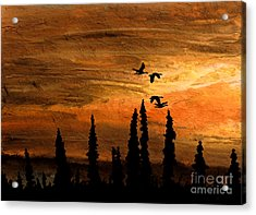 Flying Low Acrylic Print by R Kyllo