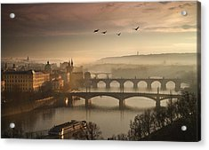 Flying Over Prague Acrylic Print by Charlie Photographer