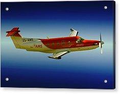 Flying Acrylic Print by Paul Job