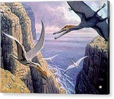 Flying Pterosaurs Acrylic Print