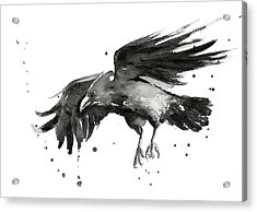 Flying Raven Watercolor Acrylic Print