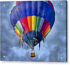 Flying The Coop Acrylic Print by Betsy Knapp