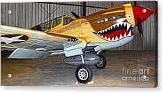 Flying Tiger - 02 Acrylic Print by Gregory Dyer