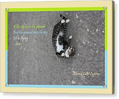 Flying With Sose From The Park Altered Cats Cyprus Acrylic Print