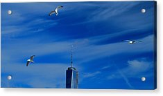 Flyover One World Trade Center Acrylic Print by Dan Sproul