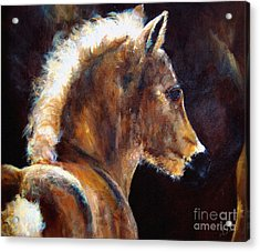 Foal Chestnut Filly Painting Acrylic Print