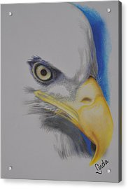 Focused Eagle Acrylic Print