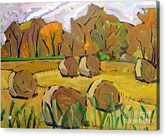 Fodder Bales Acrylic Print by Charlie Spear