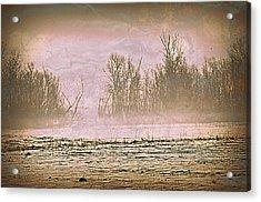 Fog Abstract 2 Acrylic Print by Marty Koch