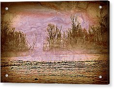 Fog Abstract 3 Acrylic Print by Marty Koch