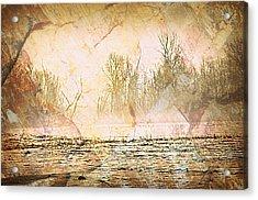 Fog Abstract 4 Acrylic Print by Marty Koch