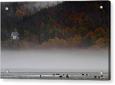 Fog Along The Cabot Trail During Autumn Acrylic Print