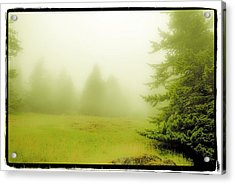 Acrylic Print featuring the photograph Fog Bank by Craig Perry-Ollila