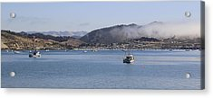 Fog Hovering Over San Luis Obispo Bay Acrylic Print by Jan Cipolla
