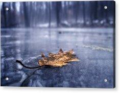 Fog Ice Leaf Acrylic Print