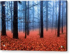 Fog On Leaves Acrylic Print