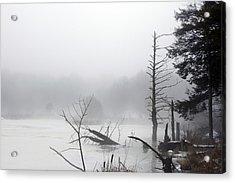 Fog On The Beaver Pond Acrylic Print by David Simons