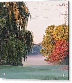 Acrylic Print featuring the photograph Foggy Autumn by Nikki McInnes