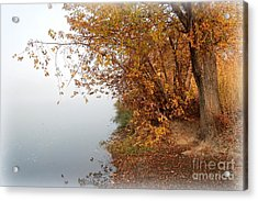 Foggy Autumn Riverbank Acrylic Print by Carol Groenen