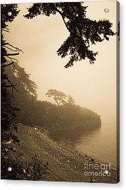 Acrylic Print featuring the photograph Foggy Beach by Jeff Loh