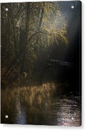 Acrylic Print featuring the photograph Foggy Creek by Inge Riis McDonald