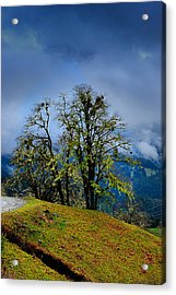 Foggy Day Acrylic Print by Donald Fink