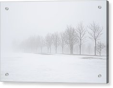 Foggy Day With Snow Acrylic Print by Donna Doherty