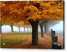 Foggy Fall Morning Acrylic Print by Lynn Hopwood