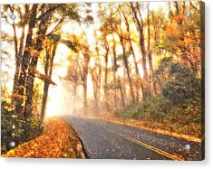 Foggy Fall Wonderland - Blue Ridge Parkway II Acrylic Print by Dan Carmichael
