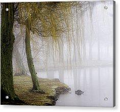 Foggy Lake Morning Acrylic Print by Vicki Jauron