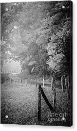 Foggy Loop Road Acrylic Print