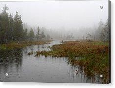 Foggy Marsh Near Jordan Pond Acrylic Print by Juergen Roth