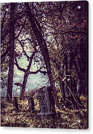 Acrylic Print featuring the photograph Foggy Memories by Melanie Lankford Photography