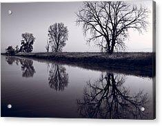 Foggy Morn Bw Acrylic Print by Steve Gadomski