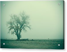 Foggy Morn Acrylic Print by Todd Klassy