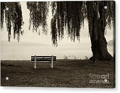 Foggy Morning At Stewart Park Acrylic Print