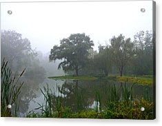 Foggy Morning At The Willows Acrylic Print