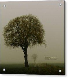 Foggy Morning Acrylic Print by Franziskus Pfleghart